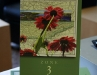 Books available for purchase at the 2009 Clarksville Writers\' Conference