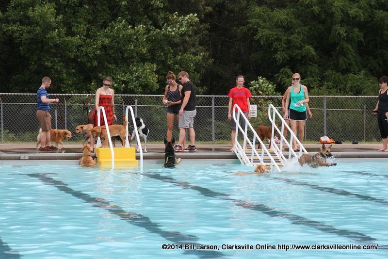 Clarksville Department Of Parks And Recreation Hosts 4th Annual Dog People Party Clarksville
