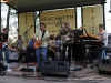 2015 Jazz on the Lawn - May 9th - The Bicho Brothers (19).JPG