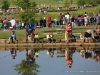 2015 TWRA - Clarksville Parks and Recreation Fishing Rodeo (16)