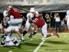2017 Austin Peay Football vs. Morehead State (137)