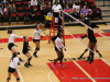 2017 OVC Tournament - Austin Peay vs. Southeast Missouri (24)