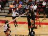 2017 OVC Tournament - Austin Peay vs. Southeast Missouri (59)