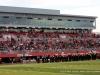 APSU Football vs. Tennessee State (85)
