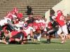 2012-apsu-football-homecoming-138