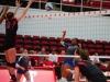 apsu-vball-vs-mtsu-11-5-13-58