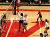 APSU Volleyball vs. Murray State (113)