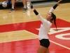 APSU Volleyball vs. Murray State (116)