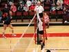 APSU Volleyball vs. Murray State (126)