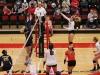 APSU Volleyball vs. Murray State (143)