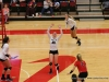 APSU Volleyball vs. Murray State (147)
