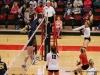 APSU Volleyball vs. Murray State (150)