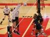 APSU Volleyball vs. Murray State (172)
