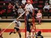 APSU Volleyball vs. Murray State (176)