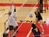 APSU Volleyball vs. Murray State (182)