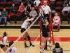 APSU Volleyball vs. Murray State (187)