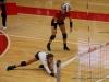 APSU Volleyball vs. Murray State (212)