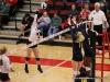 APSU Volleyball vs. Murray State (216)