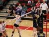APSU Volleyball vs. Murray State (217)