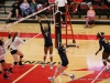 APSU Volleyball vs. Murray State (235)