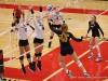 APSU Volleyball vs. Murray State (236)