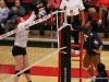 APSU Volleyball vs. Murray State (238)