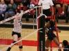 APSU Volleyball vs. Murray State (239)