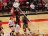 APSU Volleyball vs. Murray State (29)