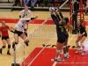 APSU Volleyball vs. Murray State (47)
