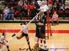 APSU Volleyball vs. Murray State (80)