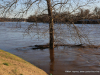 2019 February Clarksville Flood