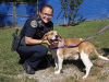 Montgomery County Animal Care and Control - Cole