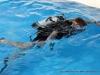 Discover Scuba Diving at Clarksville's Riverfest (10)