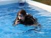 Discover Scuba Diving at Clarksville's Riverfest (9)