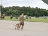 Dog handlers and their dogs assigned to 3rd Brigade Combat Team