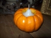 The votive candle once inserted