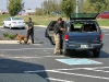 Detective Crowe gathering material necessary to process the scene and K-9 Officer Gabriel Johnson tracking at the scene.