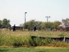 K-9 Officers performing a track in a field next to Wendy's.
