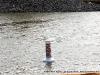 Slow No Wake buoy at the entrance to the Marina Basin.