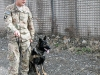 """Cpl. Daniel Crean, a military police officer dog handler assigned to 3rd Brigade Combat Team """"Rakkasans,"""" 101st Airborne Division (Air Assault), and Sgt. Misa a military working dog from the Tactical Explosive Detection Dog program listen to an after action review of their performance during the demonstration at Forward Operating Base Salerno, Afghanistan, Feb. 26, 2013. Phillips and Rocky are apart of the TEDD program, which trains Soldiers to work hand-in-hand with military working dogs. (U.S. photo by Spc. Brian Smith-Dutton Task Force 3/101 Public Affairs)"""