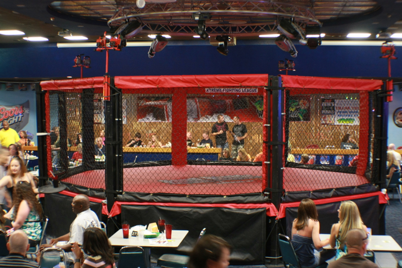 The ring where the fights are to be held