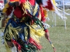 Grass Dancer Dachari