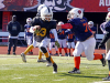 Clarksville Police Department's Sponsored Pee Wee Steelers Take Superbowl Championship (5)