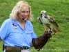 Dale Stokes with a Little Joe a Broad-winged hawk