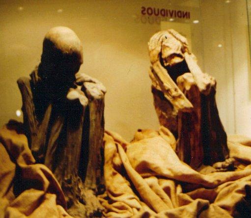 mummiesco.JPG