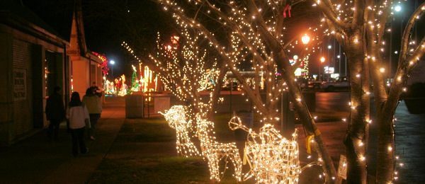 co-christmas-lightedtrees.JPG