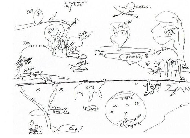 co-sketch-of-lake-scene.JPG