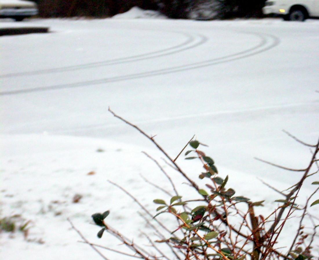 winter-08-055.jpg