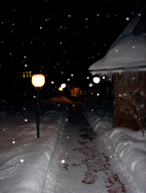 winter-walkway.JPG