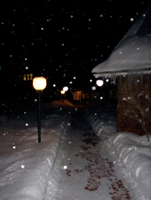 winter-walkway.JPG